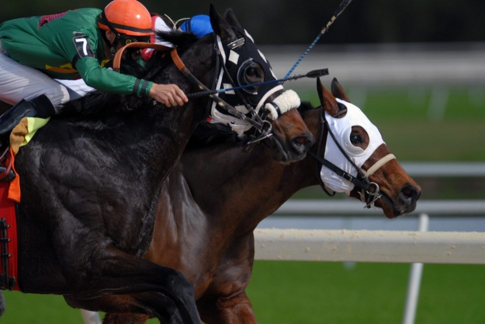 Amwager Racebook Online Betting