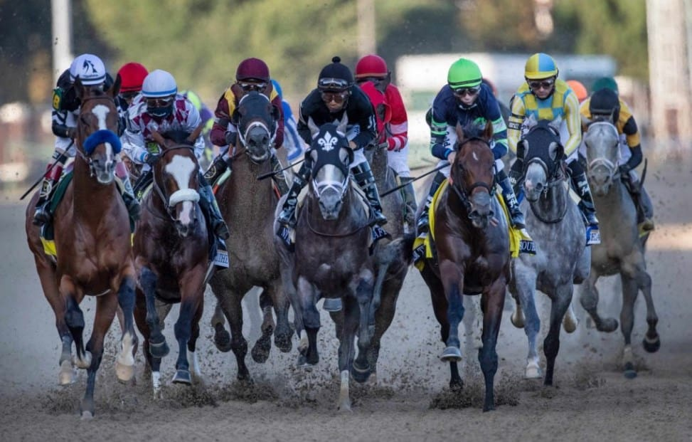 Betting at Amwager Racebook